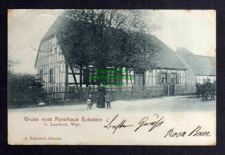Ansichtskarte Forsthaus Eckstein bei Landeck i. Wpr. Ledyczek Gasthaus 1903