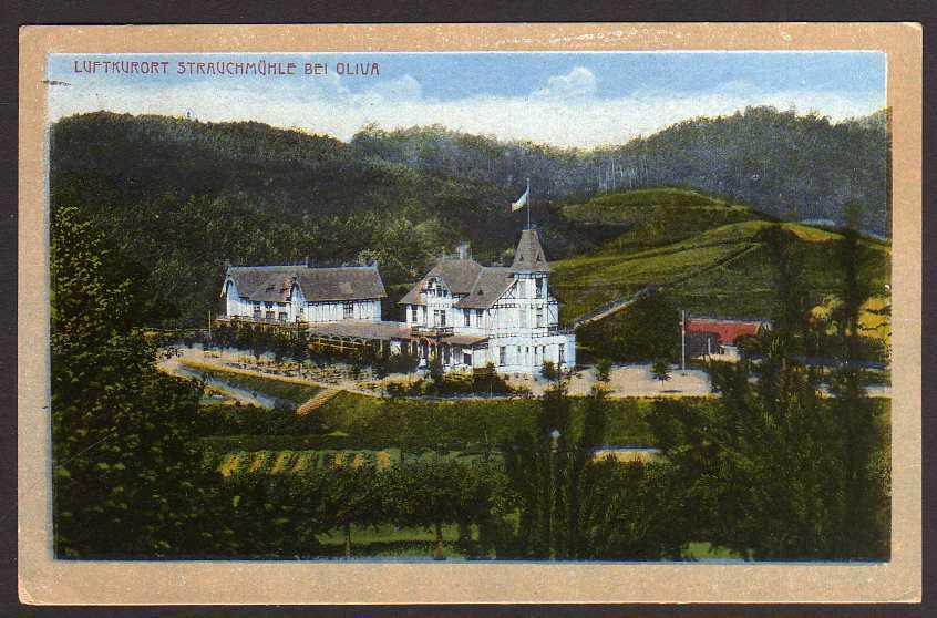 Ansichtskarte Strauchmühle bei Oliva 1919 Wpr.