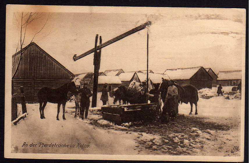Ansichtskarte Kolno Pferdetränke Pferde 1916 Feldpost Ostpreussenhilfe