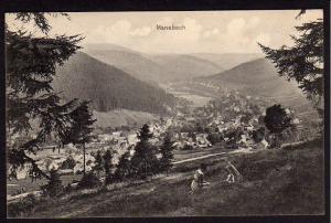 Ansichtskarte Manebach Thür.