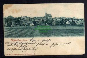 Ansichtskarte Liebenthal Schlesien Bez. Liegnitz 1905 Panorama