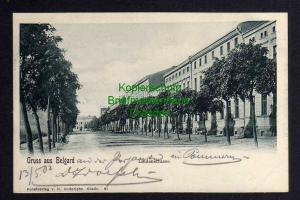 Ansichtskarte Belgard an der Persante Lindenstrasse 1902