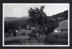 Ansichtskarte Karpenstein bei Bad Landeck Gasthaus Werner