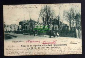 Ansichtskarte Haderslev Hadersleben 1901 Oesby Villen Viertel  Straße