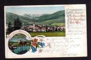 Ansichtskarte Mürzzuschlag Steiermark um 1905 Zensur Überprüft  Wien 1