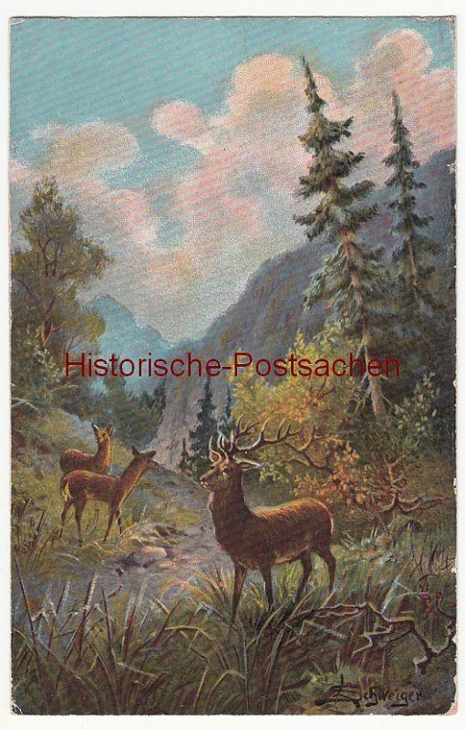 (84034) Künstler AK L. Schweiger, Hirsche im Bergwald 1917