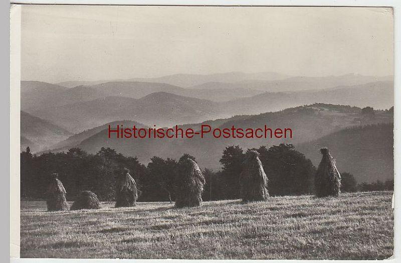 (38746) Foto AK Schlesische Beskiden (Beskid Slaski), 1966