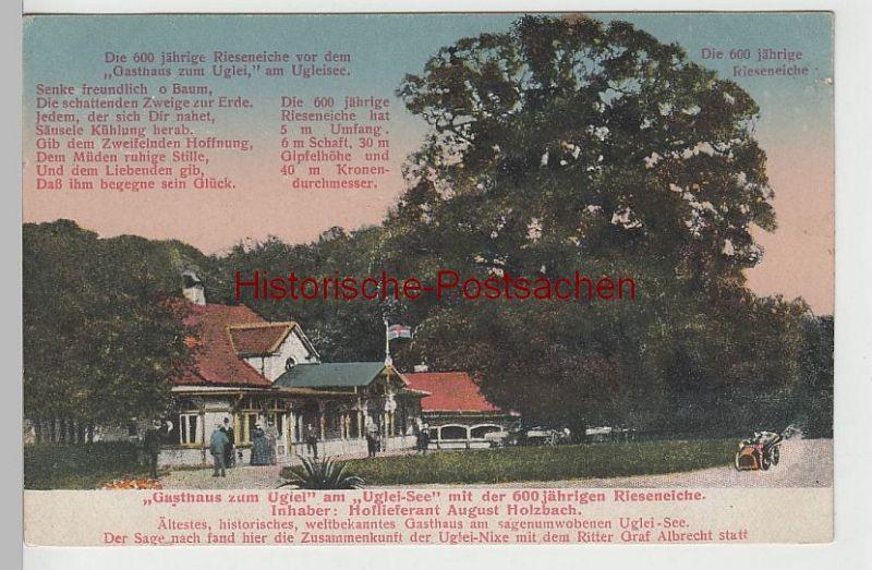 (71093) AK Gasthaus zum Uglei am Ugleisee, 600-jährige Rieseneiche, vor 1920