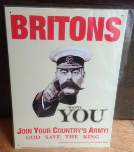 Britons wants You  30x41 cm     11993