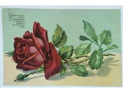 Künstlerkarte Rosen Rose Spruch   30905