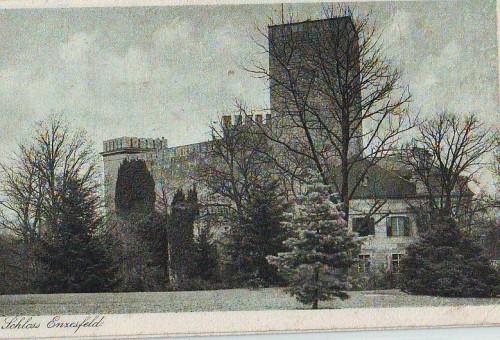374;Schloss Enzesfeld Triesting Lindabrunn 1920 0