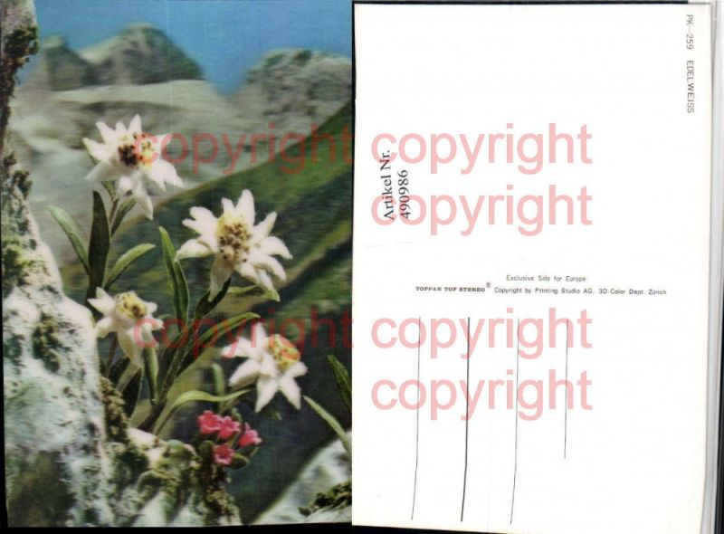 3D 3 D 3-D Karte Wackelkarte Edelweiß Alpenblumen