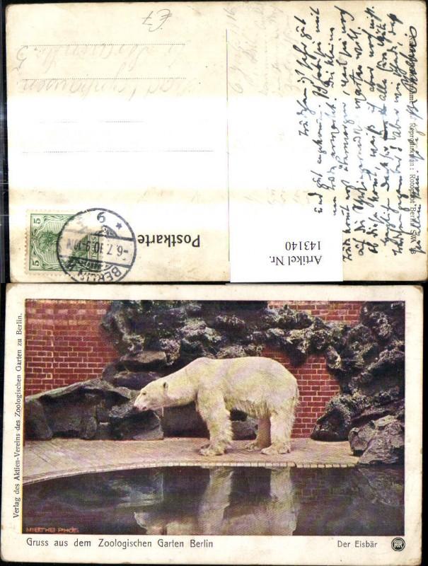 Gruss a. d. Zoologischen Gartens Berlin Eisbär Bär