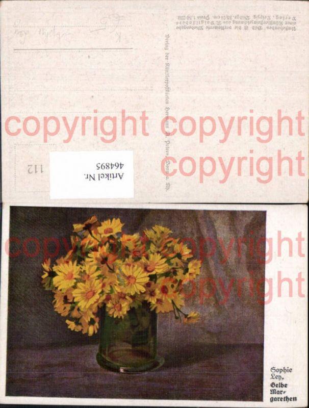 Künstler Ak Sophie Leh Gelbe Margeriten Blumen
