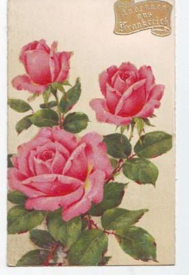 30284;Andenken aus Frankreich Blumen Glasstaub Aufdruck