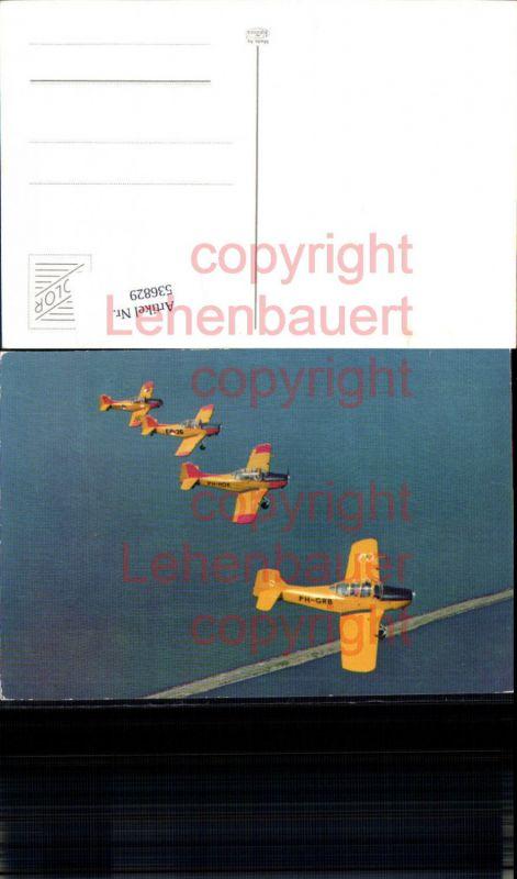 Aviaktik Flugzeug Kunstflieger