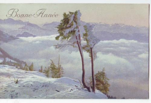 30393;Bonne Annee Winterlandschaft