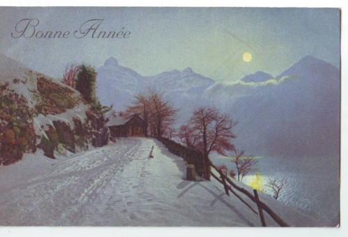 30394;Bonne Annee Mond Nach im Winter