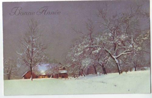 30395;Bonne Annee Winterlandschaft