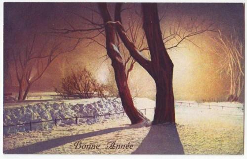30396;Bonne Annee Sonnenaufgang im Winter
