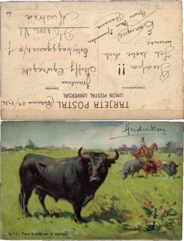 62331;Stier auf d. Weide Stierkampf sign.
