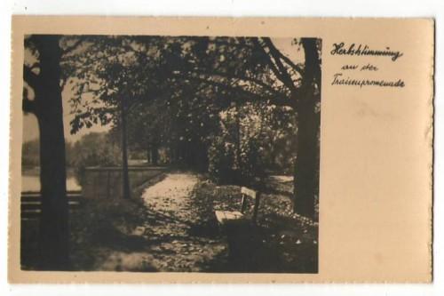 27218;Traisenpromenade St Pölten 1935