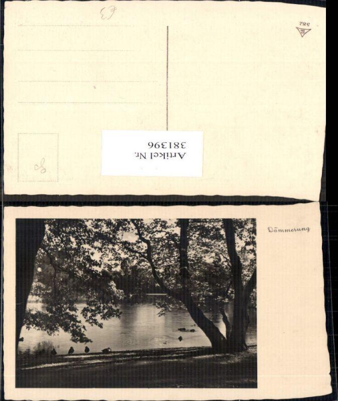 Fotokunst Dämmerung Enten a. Fluss Bäume Ufer Landschaft