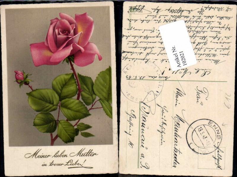 102021;Rosen Blumen Muttertag Feldpost Enns O.Ö