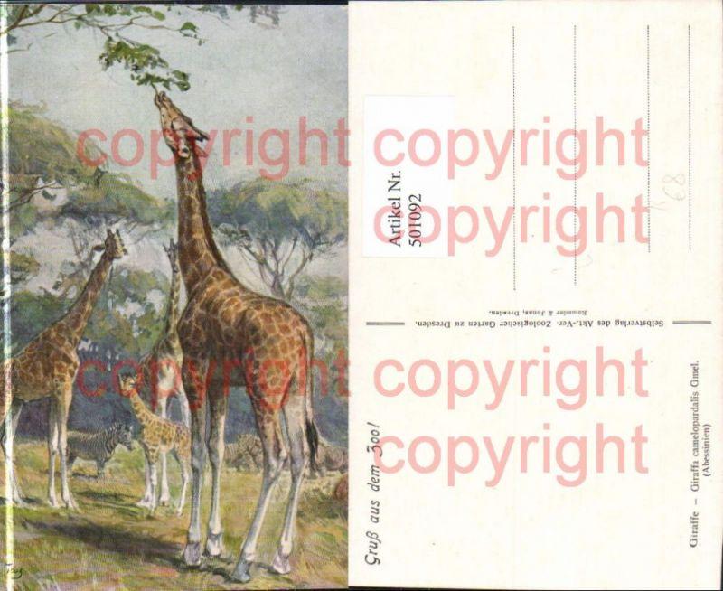 Künstler Ak W. Tag Giraffe Giraffen Abessinien