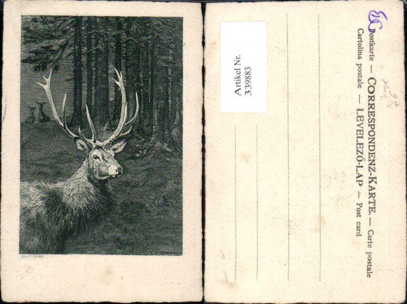 Künstler Ak E. Döcker Jagd Hirsch Rehe Wild Wald Passepartout