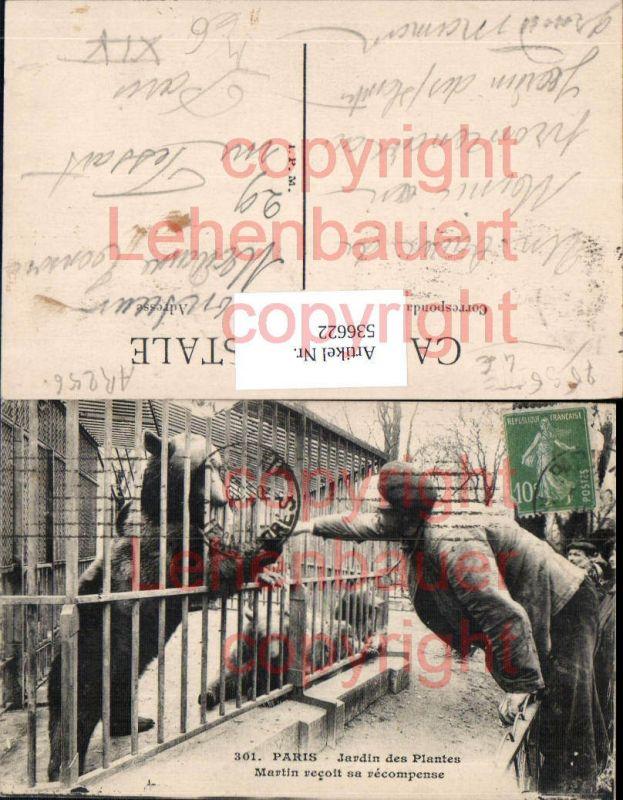 Tiere Paris Zoo Bär Braunbär
