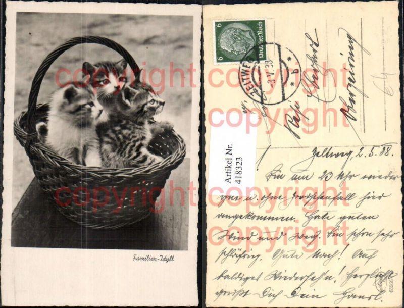 Foto Ak Drei Kätzchen Katzen in Korb Familien-Idyll