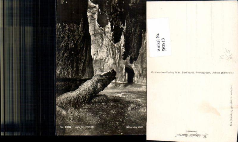 Bärengrotte Höllgrotten Baar Dom m. Krokodil Höhle Grotte