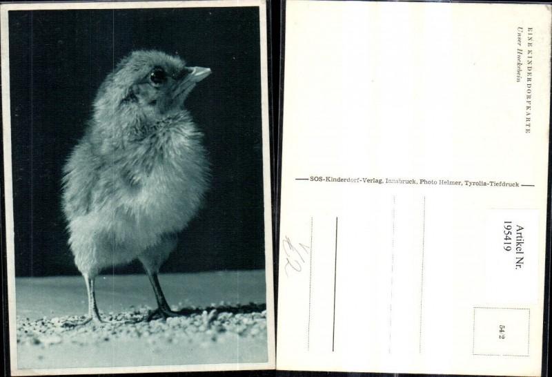 SOS Kinderdorf 54/2 Unser Huckebein Vogel Küken