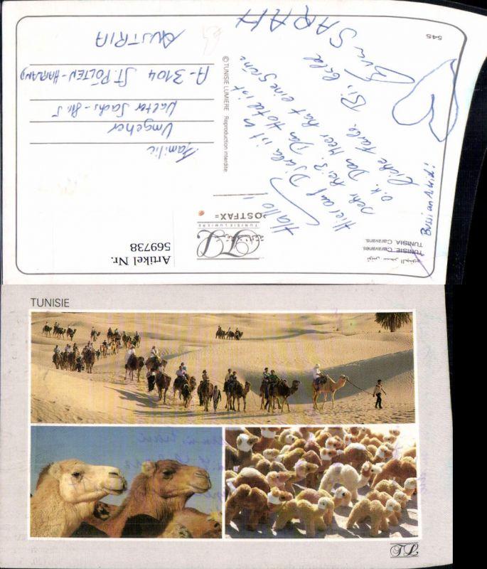 Mehrbild Ak Tunisia Caravans Tunesien Kamele Tiere