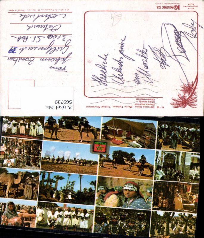 Mehrbild Ak Morocco Marokko Kamele Volkstypen Zelt