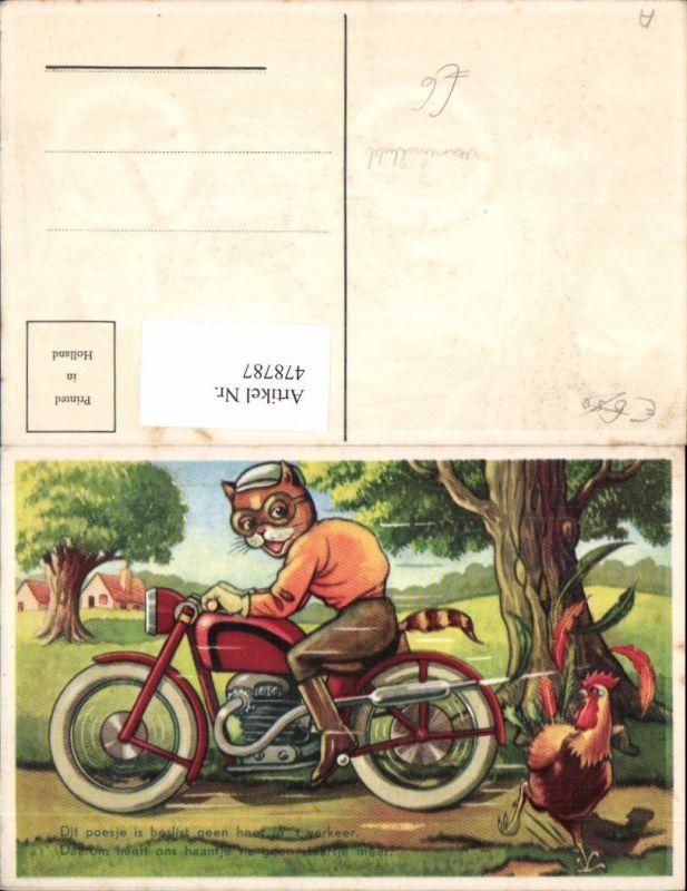 Künstler Ak Vermenschlichte Tiere Katze auf Motorrad Hahn im Weg Spruch