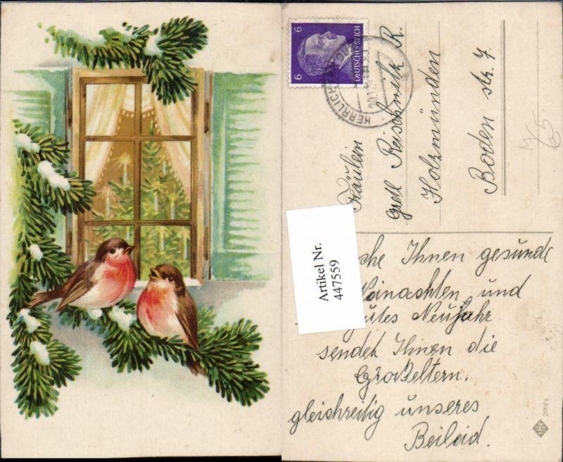 Künstler AK Tiere Vögel Rotkehlchen Fenster Weihnachtsbaum