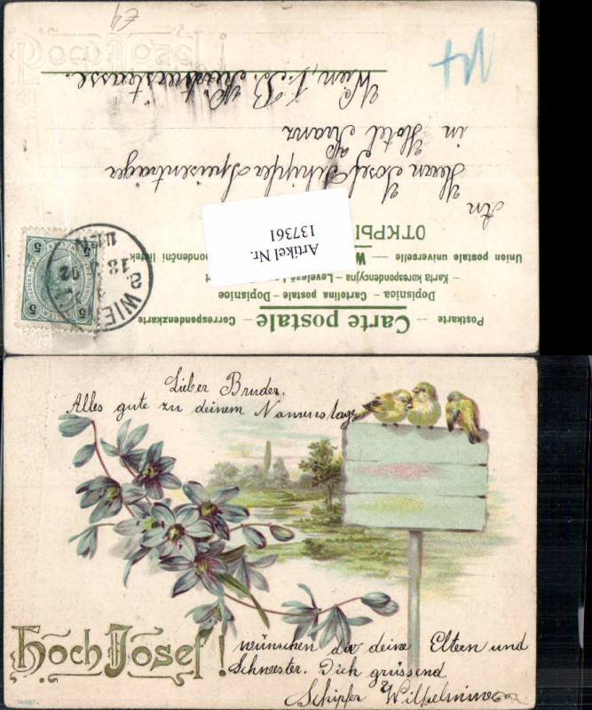 Tolle Litho Hoch Josef Küken Vogel Vögel Blumen 1900