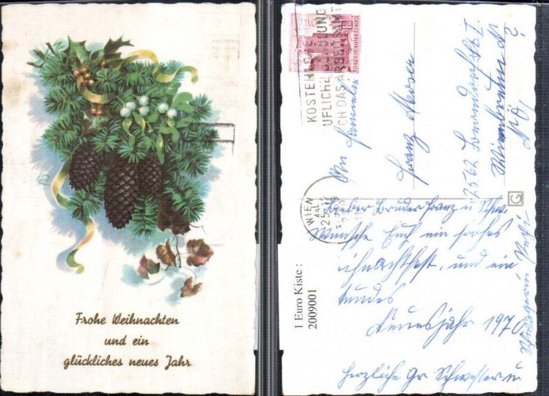 Künstler AK Weihnachten Neujahr Tannenzweige Zapfen Mistelzweig Stechpal