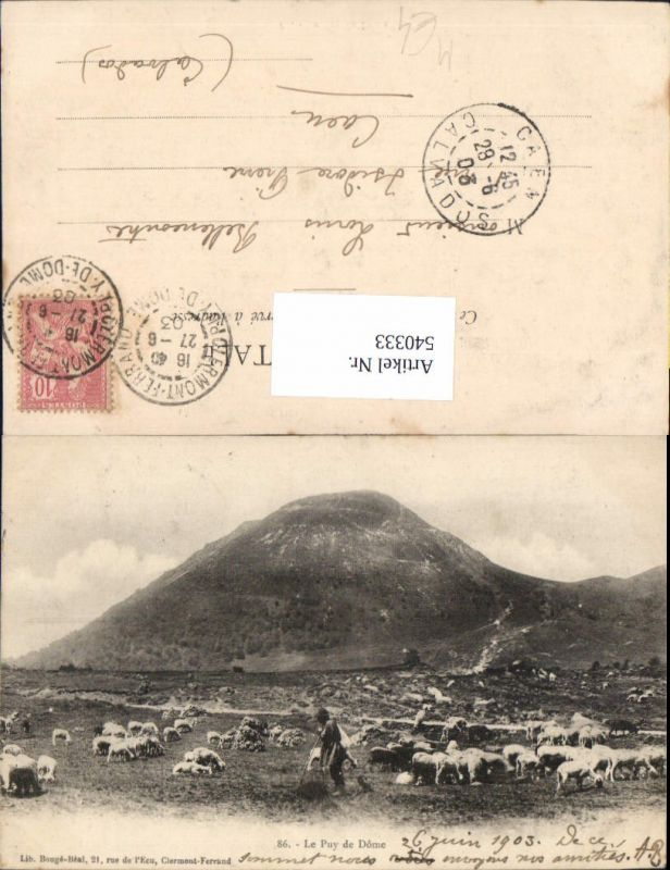 Le Puy de dome 1903 Hirte Schäfer Schafe Herde