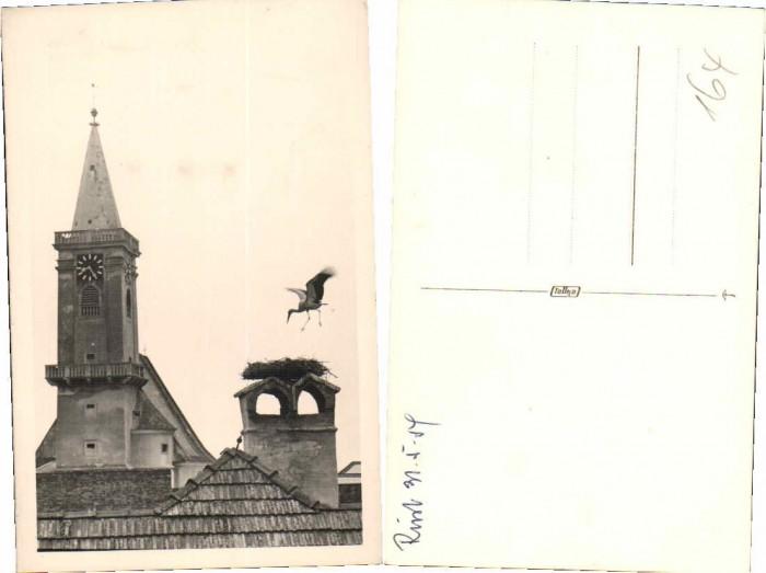 66502;Fotokarte Rust Neusiedlersee Storch