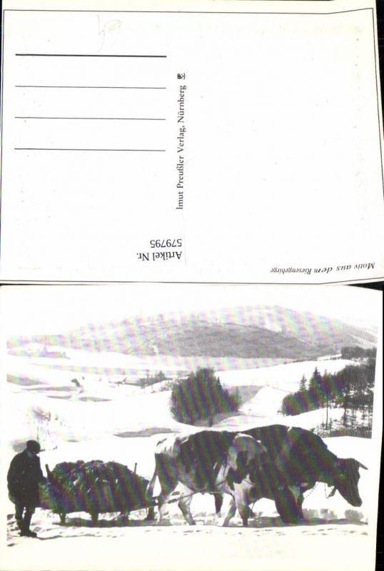 Motiv Riesengebirge Kuhgespann Rinder Schlitten i. Schnee Tiergespann