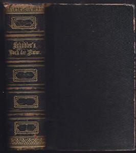 SCHOEDLER, Das Buch der Natur, die Lehren der... 1865