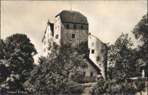 Wildegg Wildegg Schloss x / Wildegg /Bz. Lenzburg