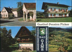 Bad Gams Bad Gams Frauenthal Weststeiermark Gasthof Pension Picker x / Bad Gams /West- und Suedsteiermark