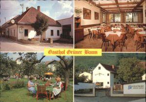 Kirchberg Wechsel Kirchberg Wechsel Gasthof Pension Gruener Baum * / Kirchberg am Wechsel /Niederoesterreich-Sued
