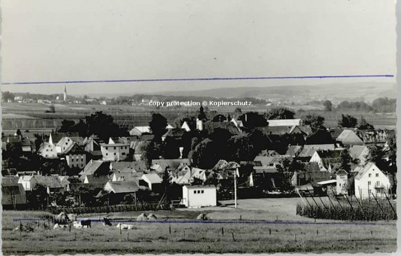 Siegenburg  o 1966