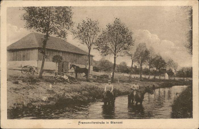 Blamont Meurthe-et-Moselle Blamont Pferd Fremonvillerstrasse x
