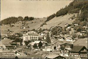 Engelberg OW Chalets an Schwandstrasse